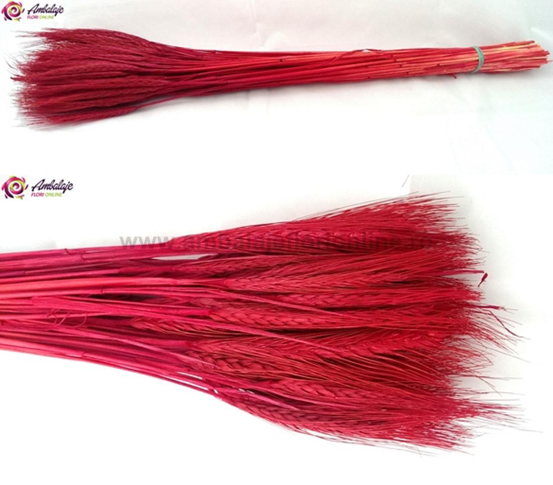Spice rosii