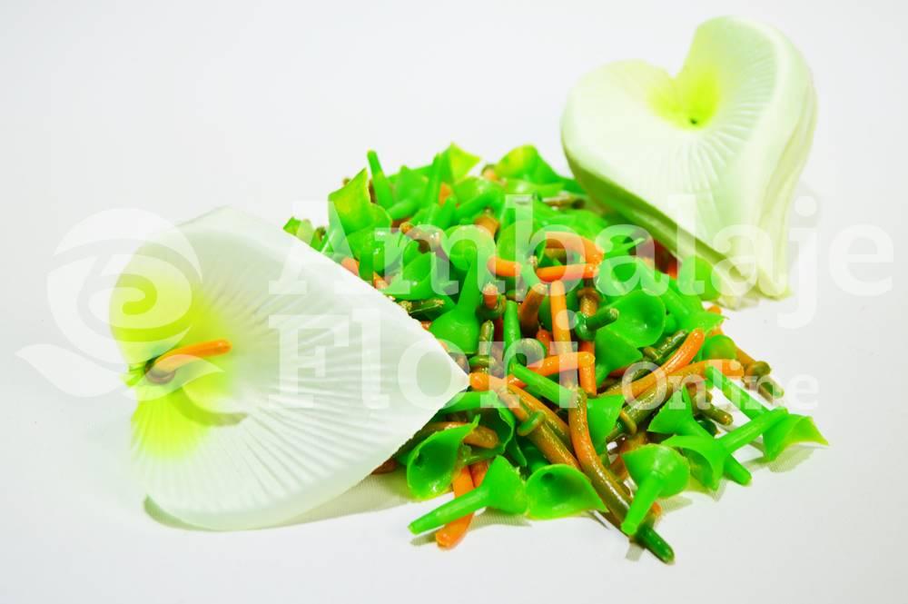 Ambalaje Flori ONLINE vinde Cap Cala Mica Crem la pretul de 19.9 lei
