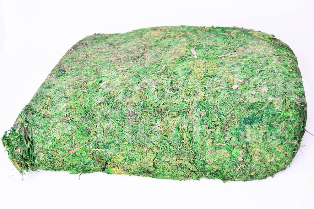 Ambalaje Flori ONLINE vinde Muschi de Copac, Natural - 900gr. la pretul de 19.9 lei