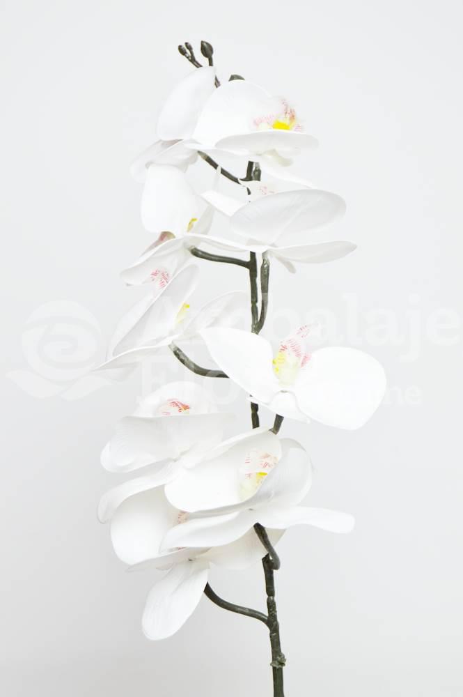 Orhidee Fir Realtouch Alba