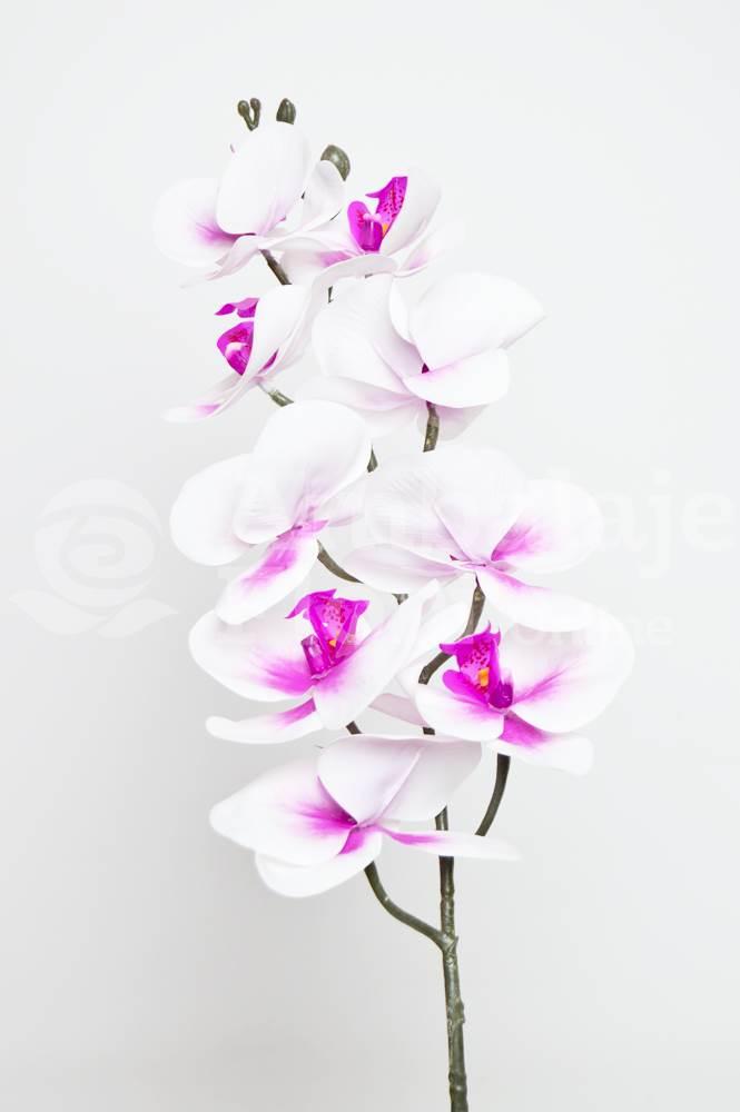 Ambalaje Flori ONLINE vinde Orhidee Fir Realtouch Alb cu Siclam la pretul de 12.9 lei