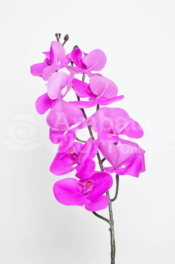 Ambalaje Flori ONLINE vinde Orhidee Fir Realtouch Siclam la pretul de 12.9 lei