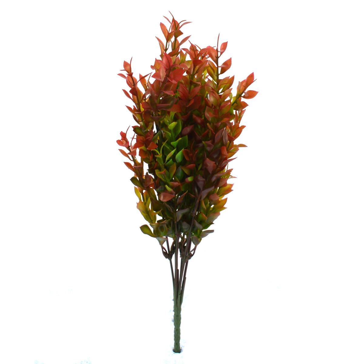 Buchet Buxus Verde cu Rosu