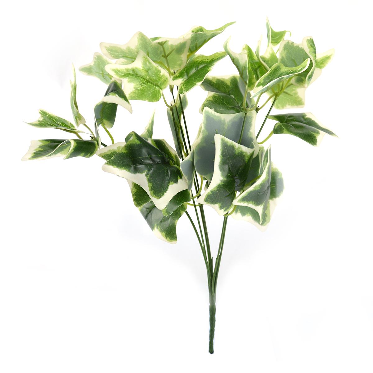 Ambalaje Flori ONLINE vinde Buchet Edera Verde cu Alb la pretul de 6.9 lei