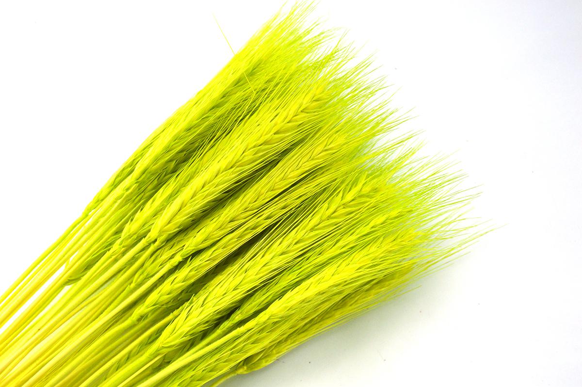 Spice verde deschis