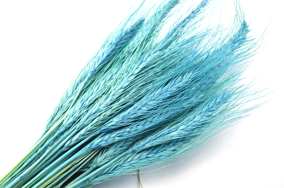 Spice turquoise
