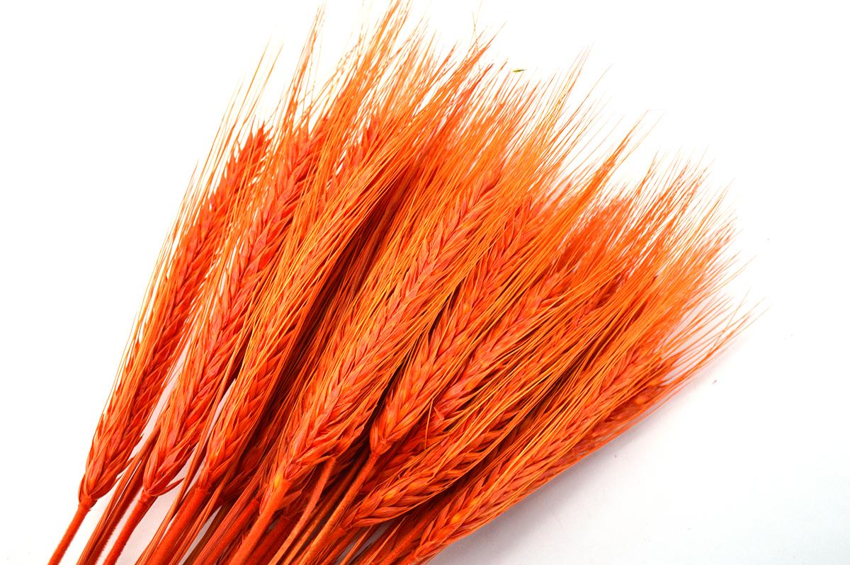 Spice portocalii - ambalaje si accesorii florale