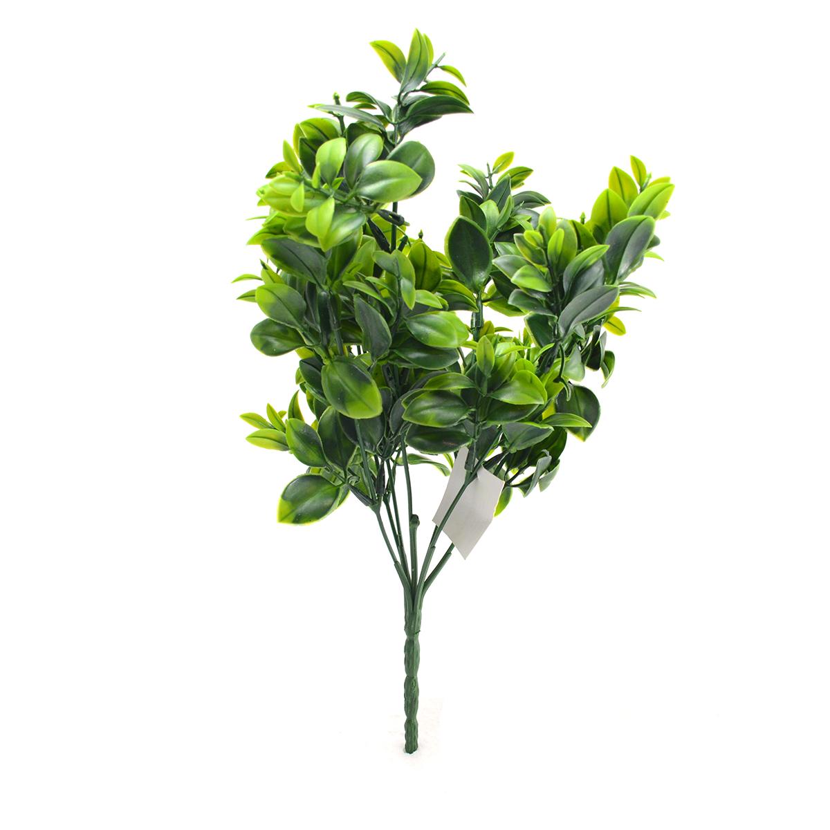 Flori Buchet Ruscus Italian