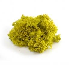 Licheni 50gr verde