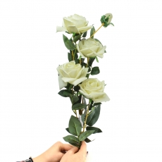 Trandafir catifea gigant cu tulpina lunga alb