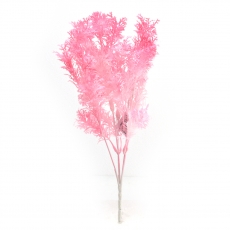 Buchet planta dill roz