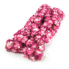 Set 144buc mini crizanteme cu pistil, siclam