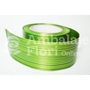 Rola Aspidistra Verde