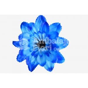 Cap DL Albastru