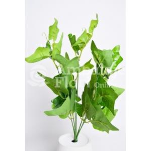 Buchet Edera Verde - ambalaje si accesorii florale