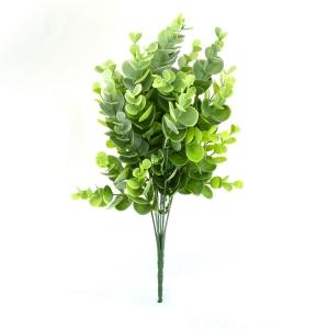 Ambalaje Flori ONLINE vinde Buchet Eucalipt Mini Verde cu Alb la pretul de 6.9 lei