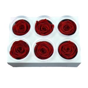 Set 6 Trandafiri Criogenati - Rosu - ambalaje si accesorii florale