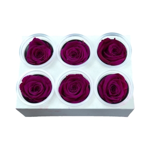 Set 6 Trandafiri Criogenati - Fuchsia - ambalaje si accesorii florale