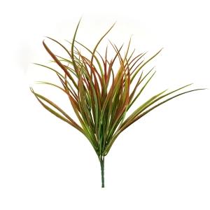 Ambalaje Flori ONLINE vinde Buchet Cordyline Verde cu Rosu la pretul de 5.9 lei