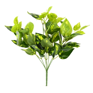 Buchet Ficus