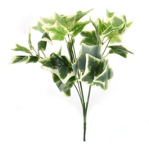Buchet Edera Verde cu Alb