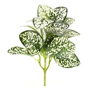 Buchet Polka Verde cu Alb