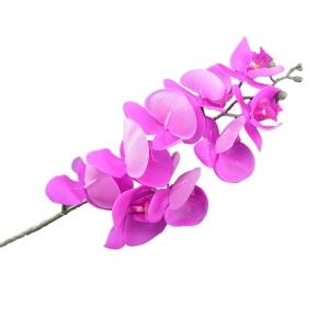 Orhidee Fir Realtouch Siclam