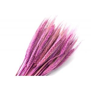 Ambalaje Flori ONLINE vinde Spice marsalla la pretul de 7.99 lei