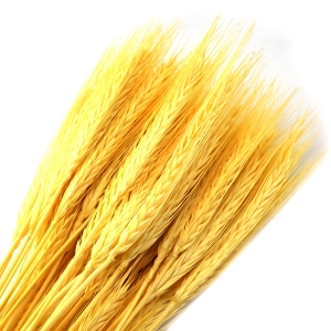 Ambalaje Flori ONLINE vinde Spice natur la pretul de 7.99 lei
