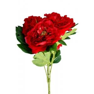 Ambalaje Flori ONLINE vinde Buchet 5 Bujori Mari Rosii la pretul de 28.9 lei