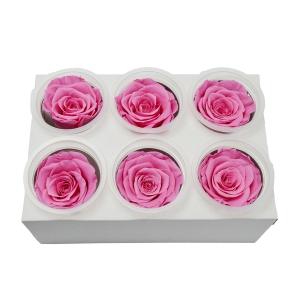 Set 6 Trandafiri Criogenati - roz - ambalaje si accesorii florale