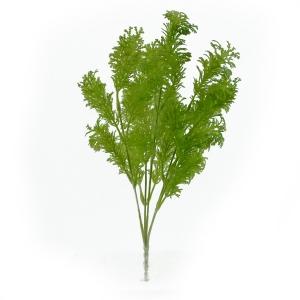 Buchet planta dill verde