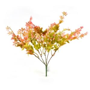 Buchet Rubus verde rosu
