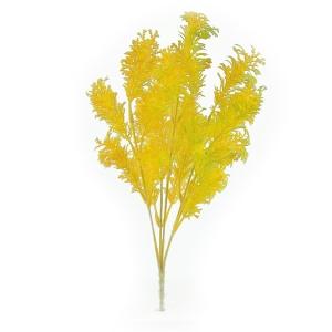 Buchet planta dill galben