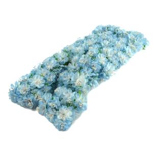 Set 144buc mini crizanteme cu pistil, bleo